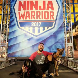 K9 Ninja Dogs